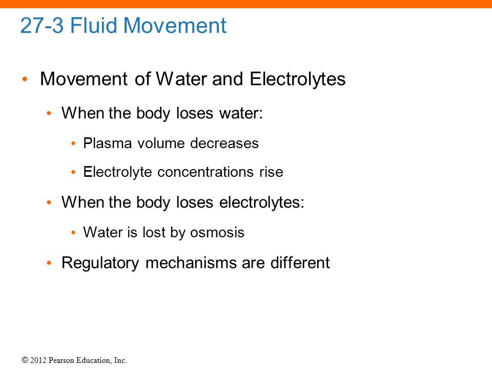 27-3 Fluid Movement Movement of Water and Electrolytes