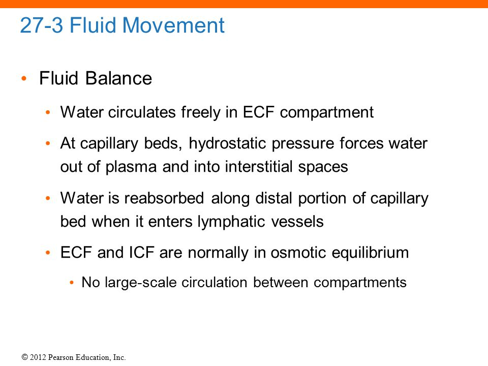 27-3 Fluid Movement Fluid Balance