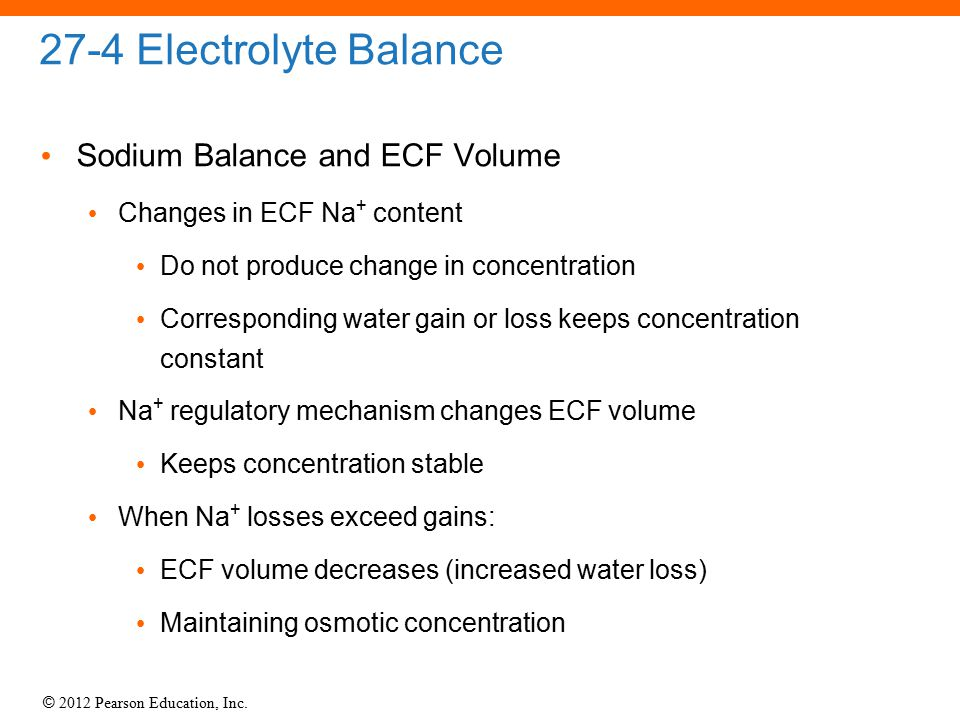 27-4 Electrolyte Balance Sodium Balance and ECF Volume