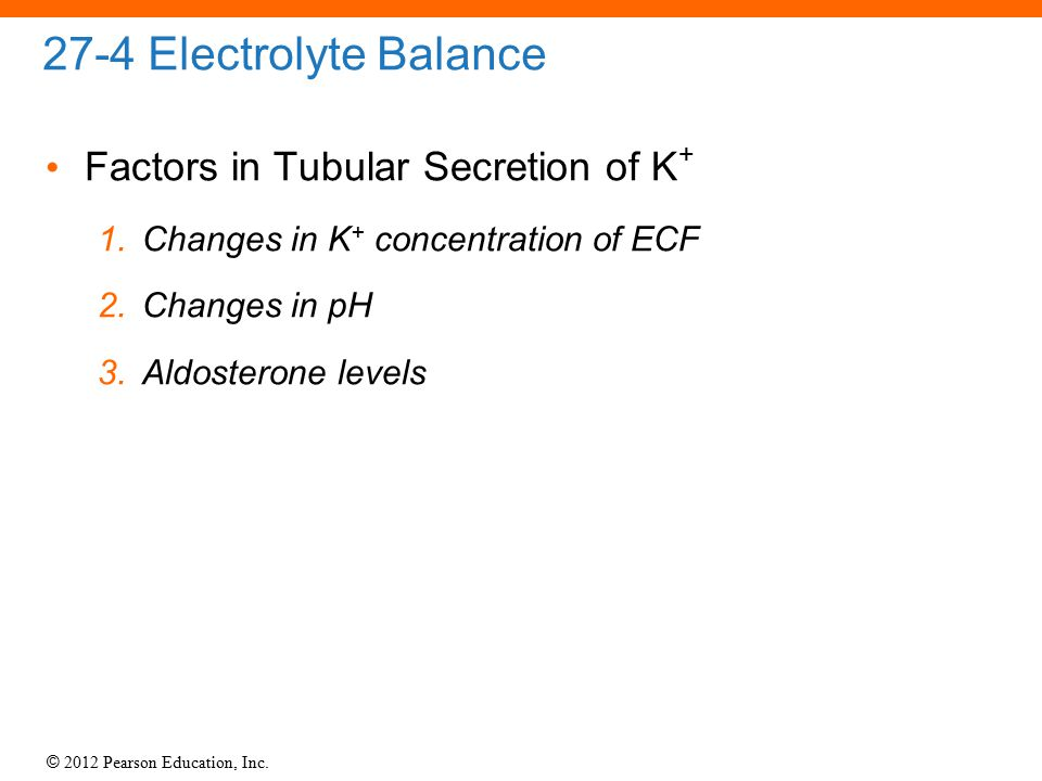 27-4 Electrolyte Balance Factors in Tubular Secretion of K+