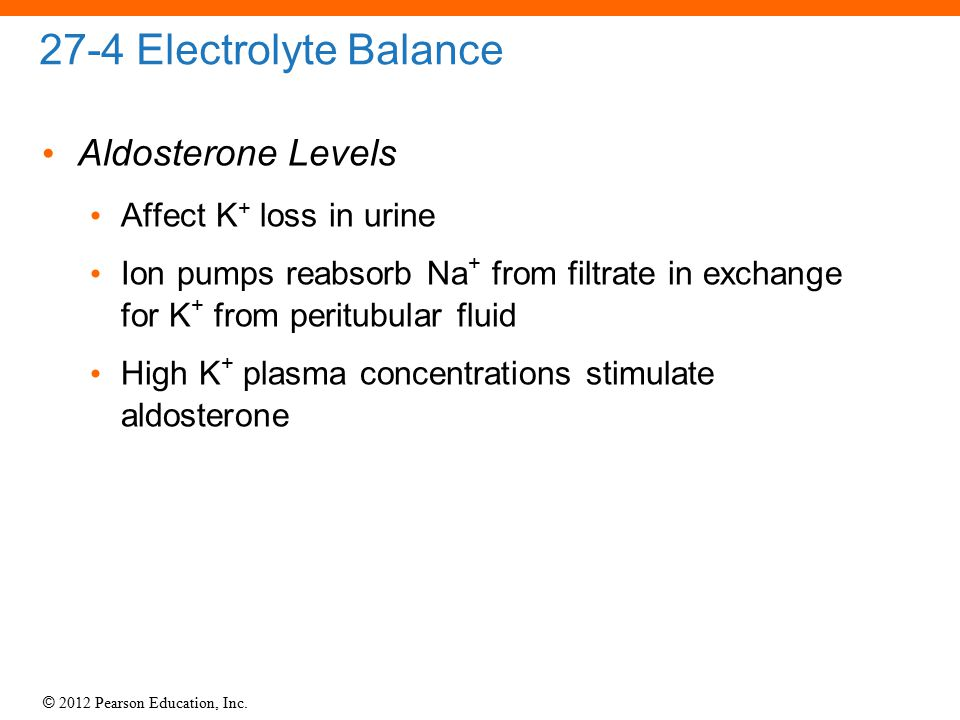 27-4 Electrolyte Balance Aldosterone Levels Affect K+ loss in urine