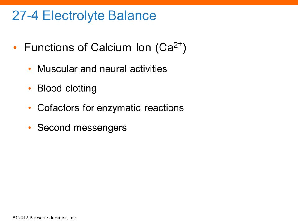27-4 Electrolyte Balance Functions of Calcium Ion (Ca2+)