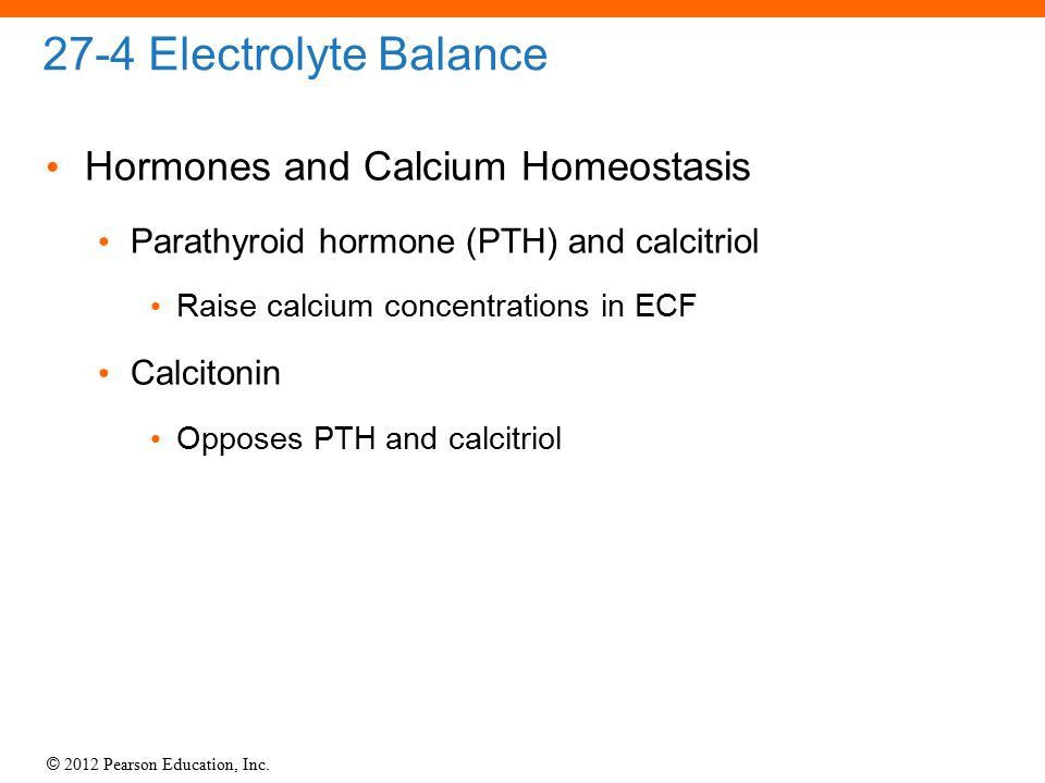 27-4 Electrolyte Balance Hormones and Calcium Homeostasis