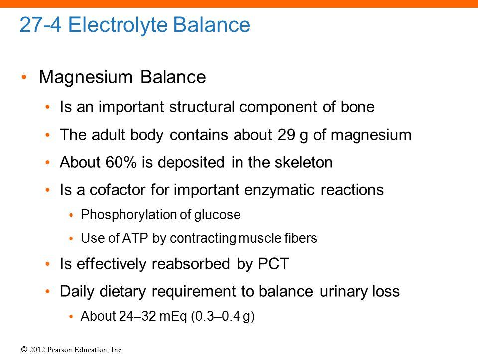 27-4 Electrolyte Balance Magnesium Balance