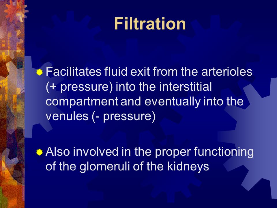Filtration Facilitates fluid exit from the arterioles (+ pressure) into the interstitial compartment and eventually into the venules (- pressure)