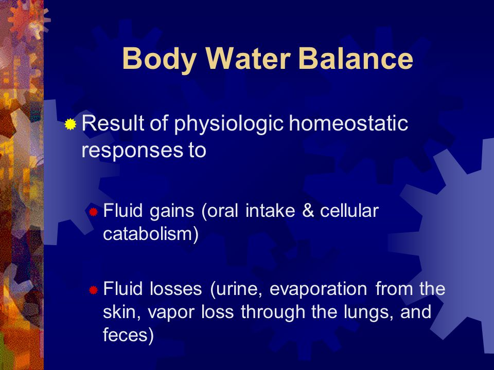 Body Water Balance Result of physiologic homeostatic responses to