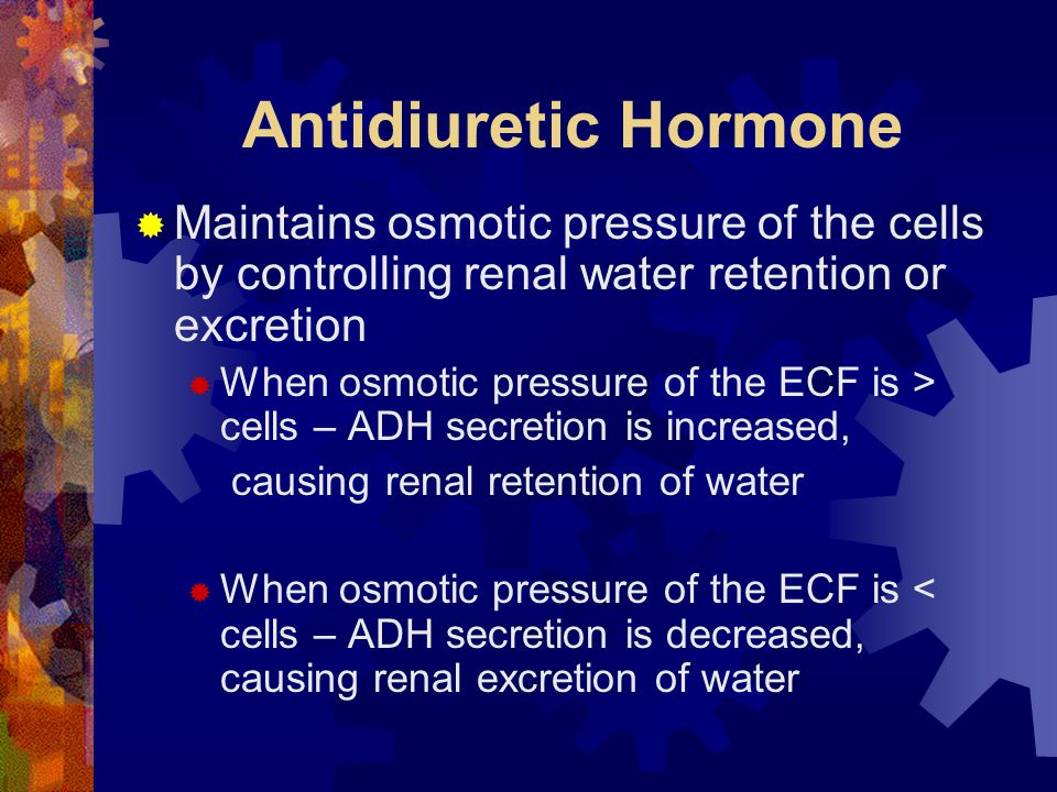 Antidiuretic Hormone Maintains osmotic pressure of the cells by controlling renal water retention or excretion.