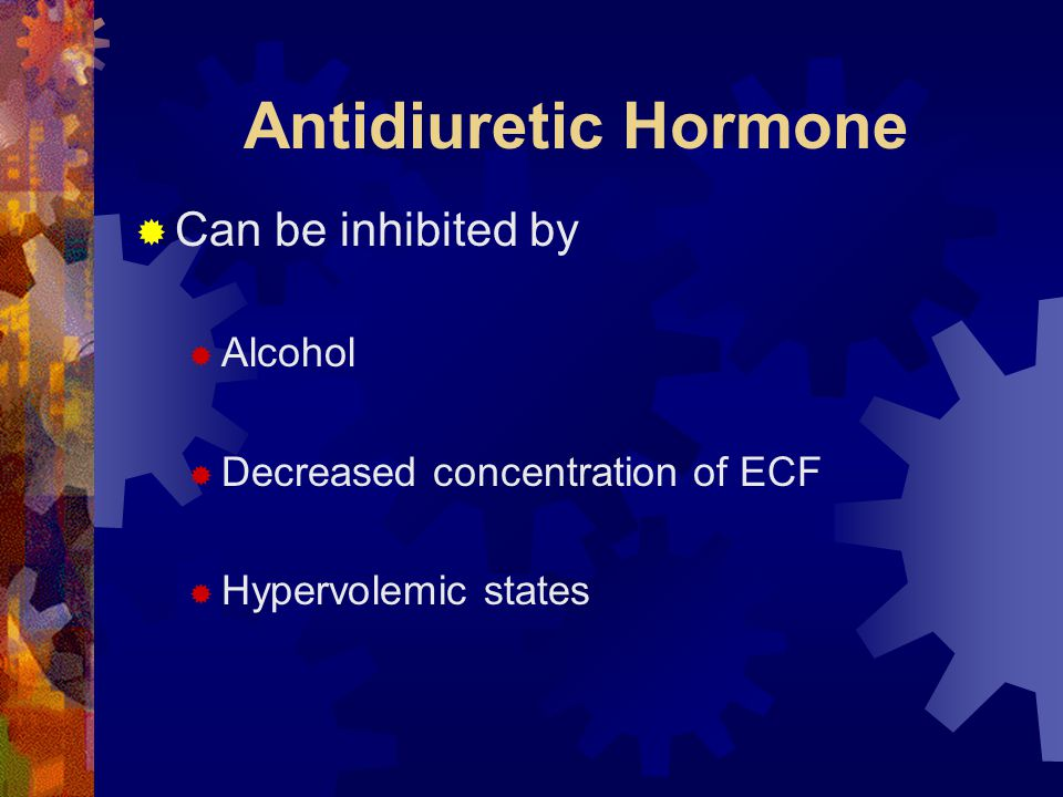 Antidiuretic Hormone Can be inhibited by Alcohol