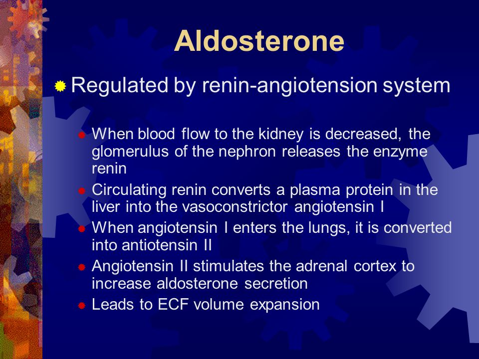 Aldosterone Regulated by renin-angiotension system