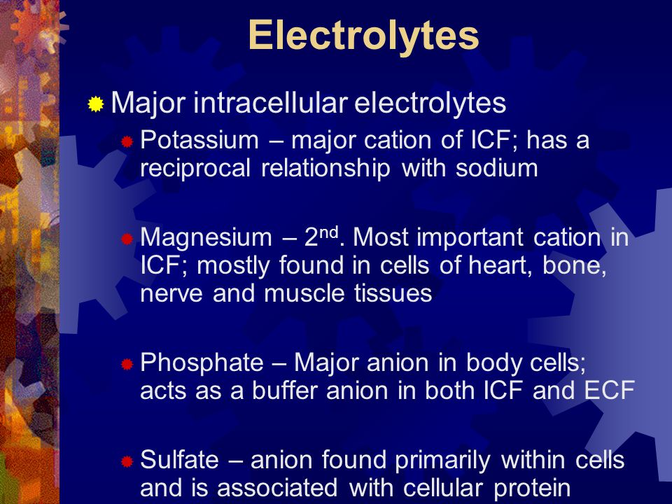 Electrolytes Major intracellular electrolytes