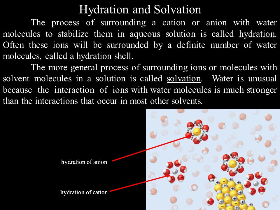 Hydration and Solvation