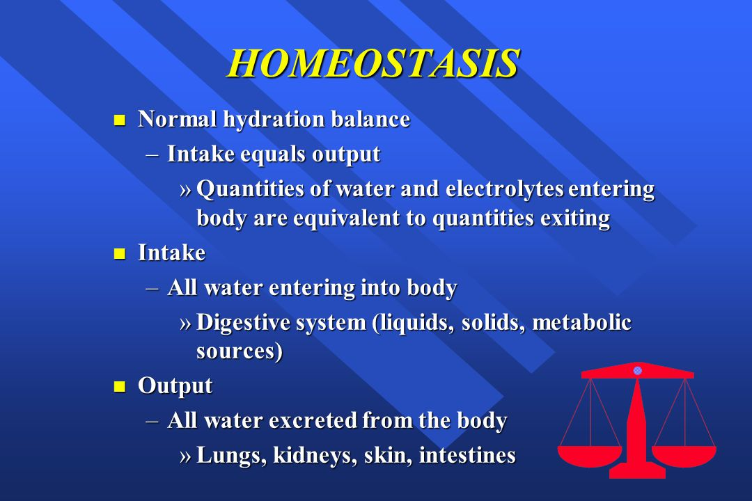 HOMEOSTASIS Normal hydration balance Intake equals output