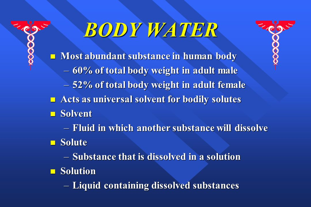 BODY WATER Most abundant substance in human body