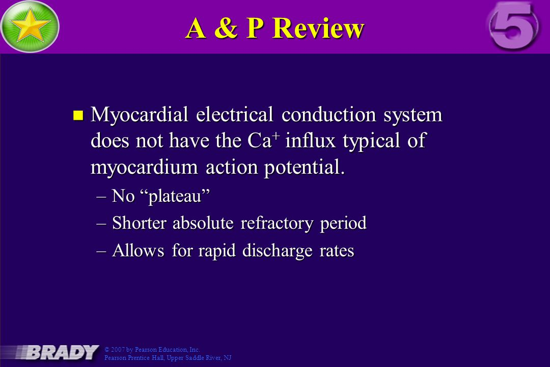 A & P Review Myocardial electrical conduction system does not have the Ca+ influx typical of myocardium action potential.