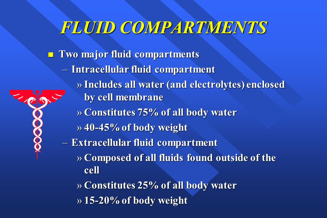 FLUID COMPARTMENTS Two major fluid compartments