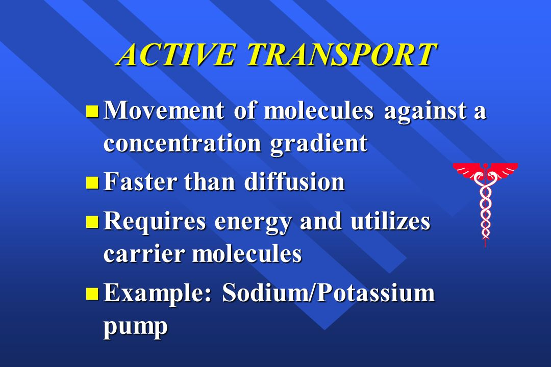 ACTIVE TRANSPORT Movement of molecules against a concentration gradient. Faster than diffusion. Requires energy and utilizes carrier molecules.