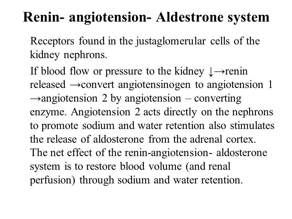 Renin- angiotension- Aldestrone system