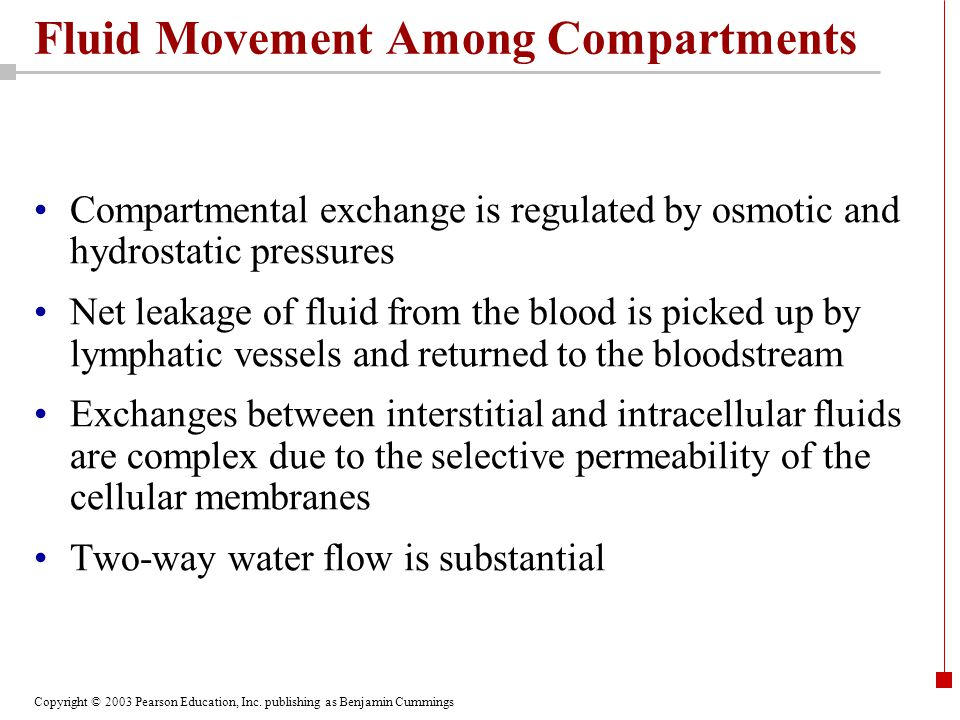 Fluid Movement Among Compartments