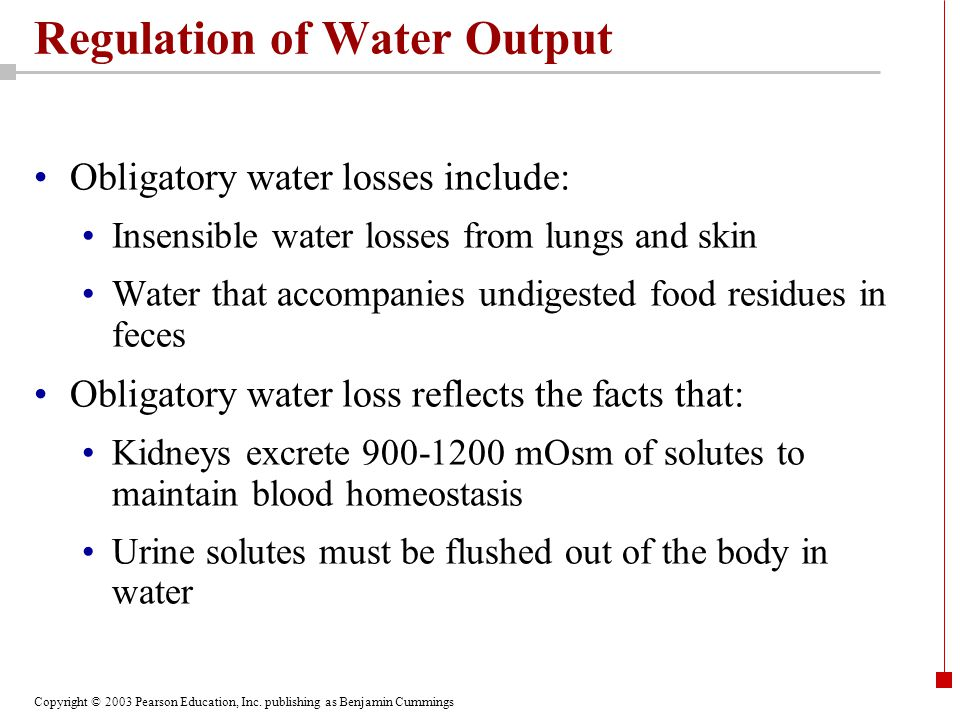 Regulation of Water Output