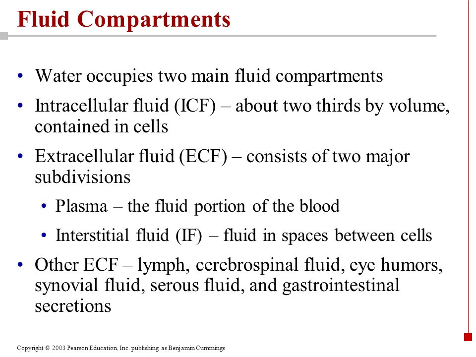Fluid Compartments Water occupies two main fluid compartments