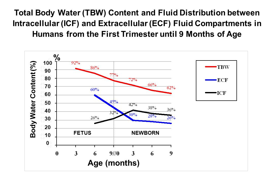 Total Body Water (TBW) Content and Fluid Distribution between Intracellular (ICF) and Extracellular (ECF) Fluid Compartments in Humans from the First Trimester until 9 Months of Age