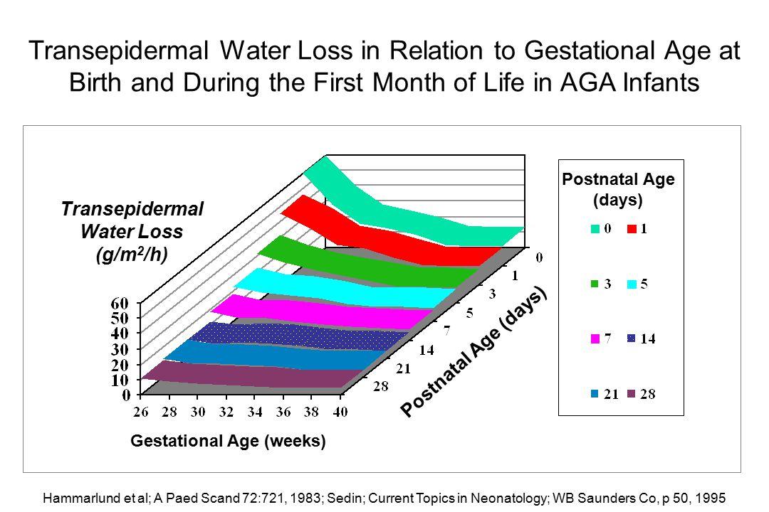 Transepidermal Water Loss Gestational Age (weeks)