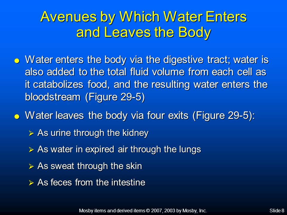 Avenues by Which Water Enters and Leaves the Body