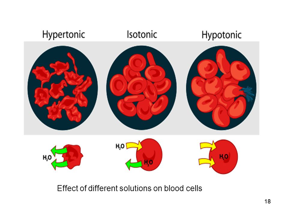 Effect of different solutions on blood cells