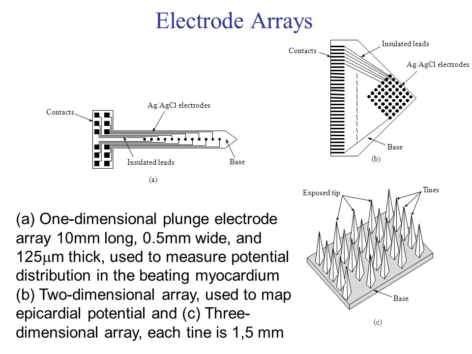 Electrode Arrays (c) Tines. Base. Exposed tip. Contacts. Insulated leads. (b) Ag/AgCl electrodes.