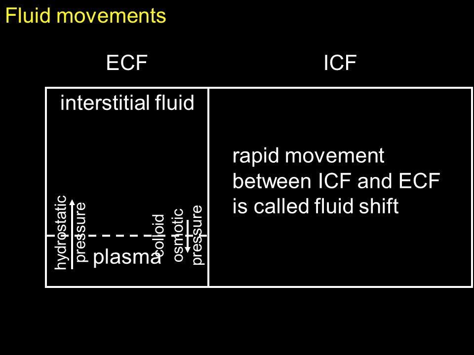 rapid movement between ICF and ECF is called fluid shift