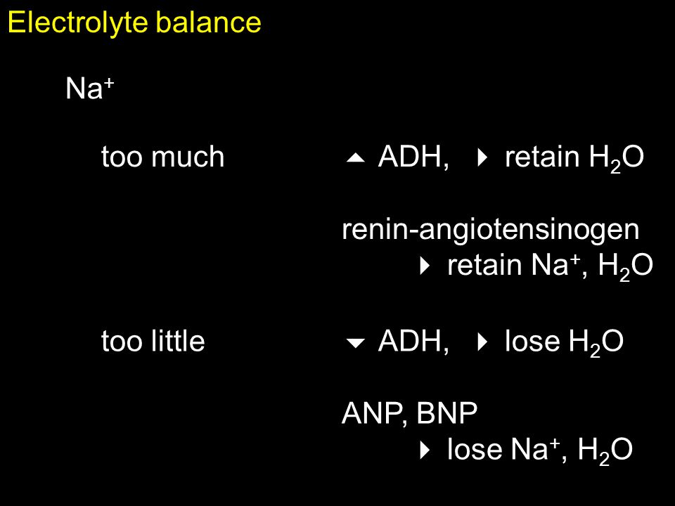 Electrolyte balance Na+ too much.  ADH,  retain H2O. renin-angiotensinogen.  retain Na+, H2O.