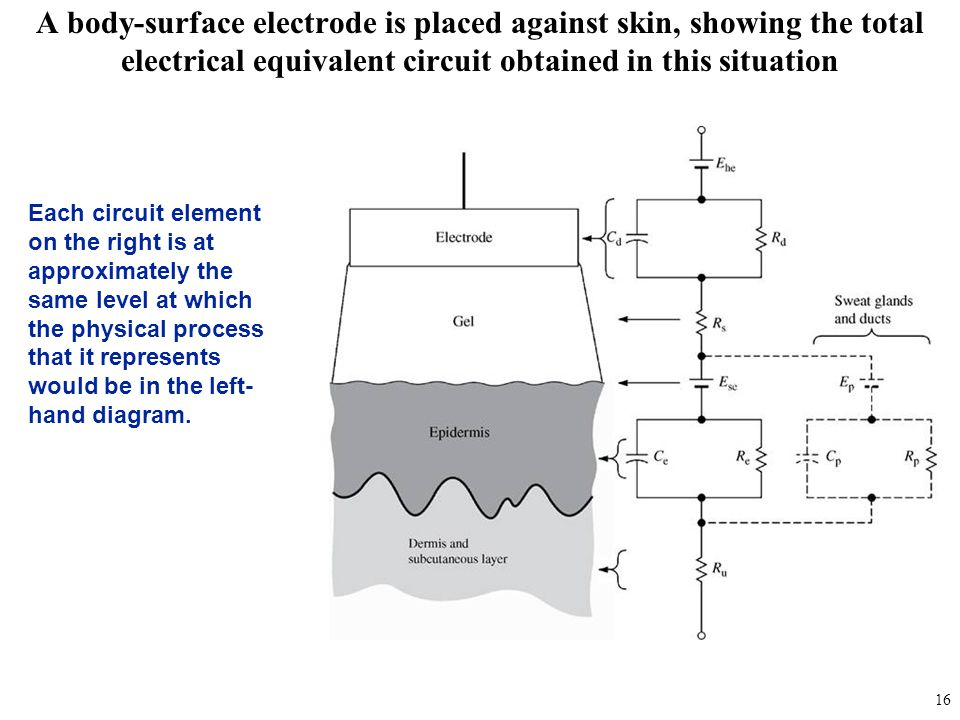 A body-surface electrode is placed against skin, showing the total electrical equivalent circuit obtained in this situation