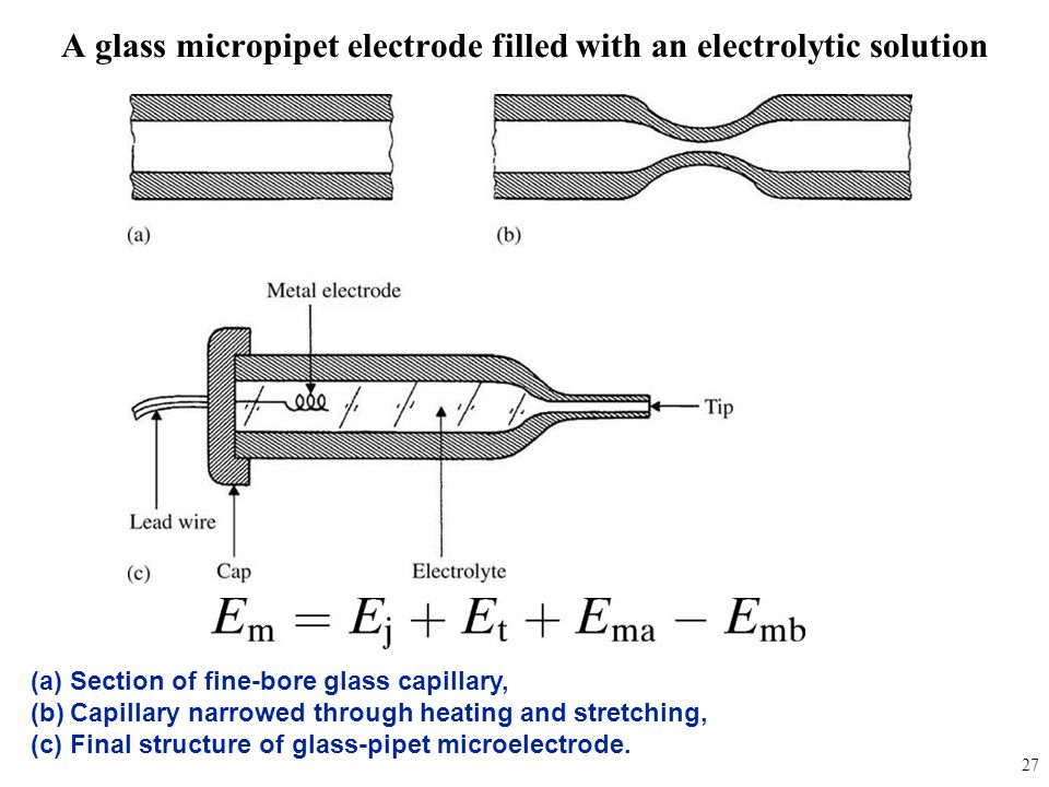 A glass micropipet electrode filled with an electrolytic solution