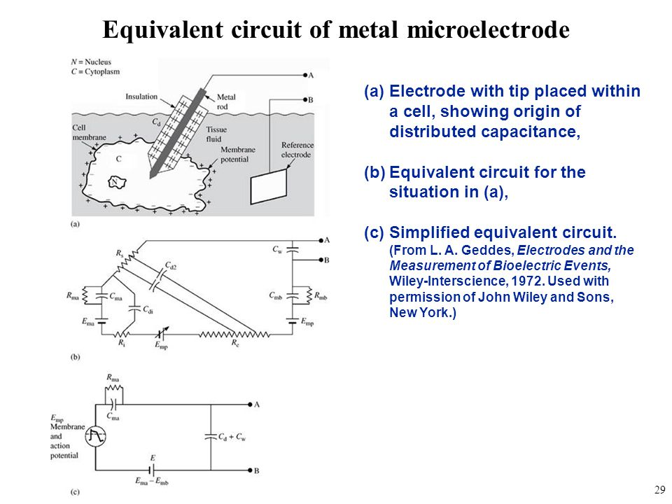Equivalent circuit of metal microelectrode
