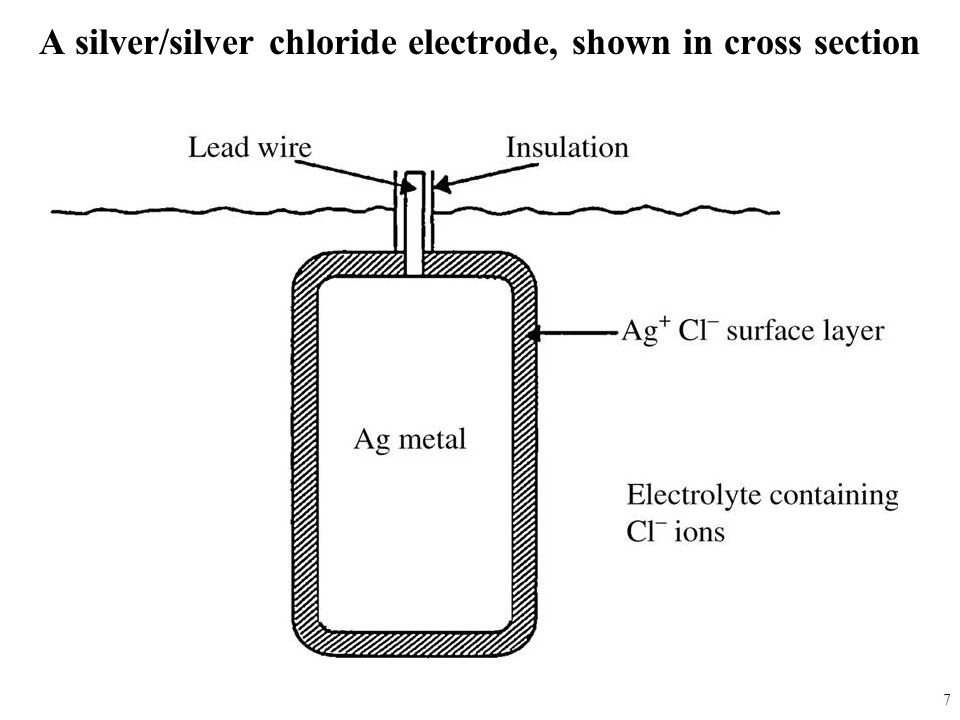 A silver/silver chloride electrode, shown in cross section