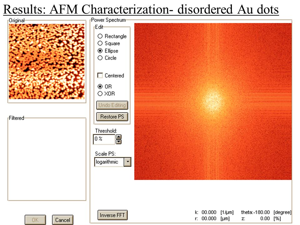 Results: AFM Characterization- disordered Au dots