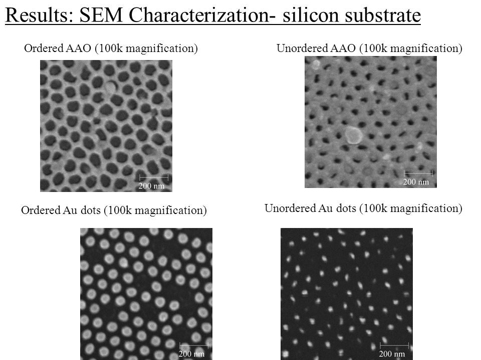 Results: SEM Characterization- silicon substrate