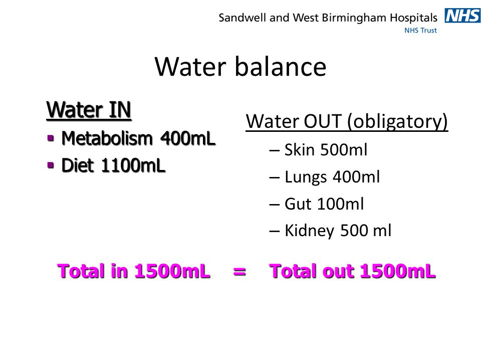 Water balance Water IN Water OUT (obligatory) Metabolism 400mL