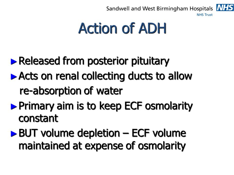 Action of ADH Released from posterior pituitary