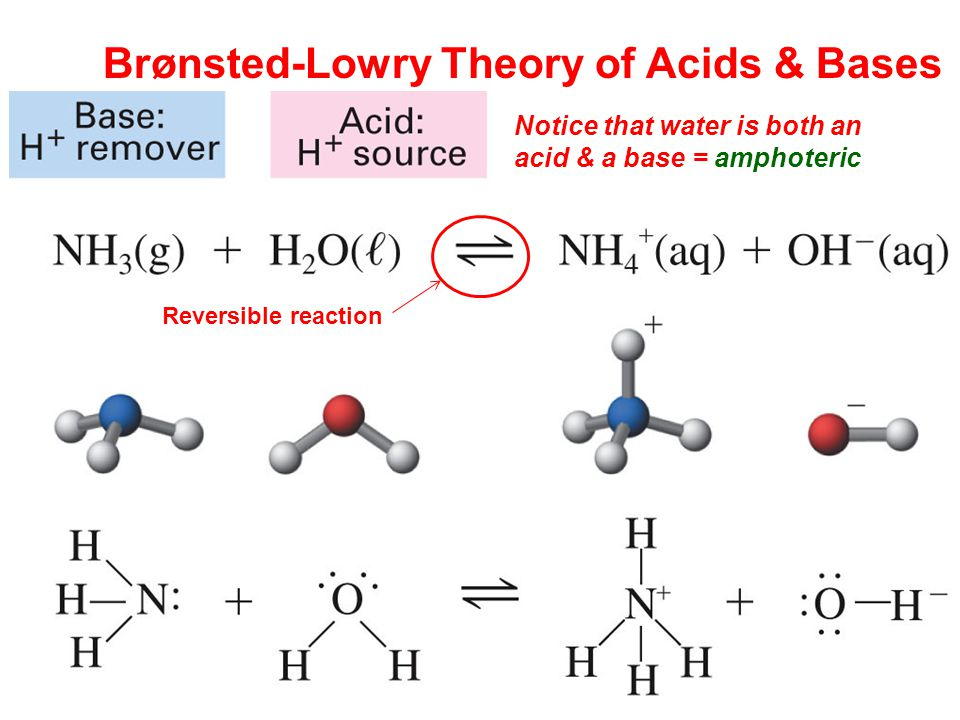 Brønsted-Lowry Theory of Acids & Bases