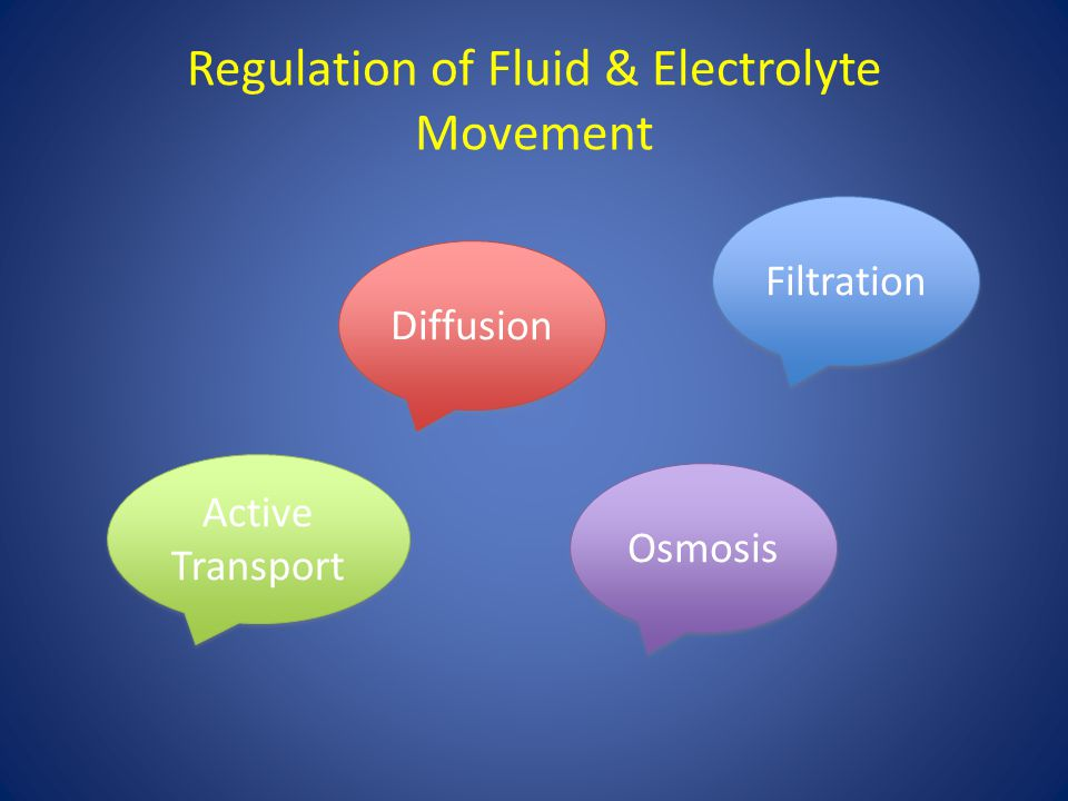 Regulation of Fluid & Electrolyte Movement