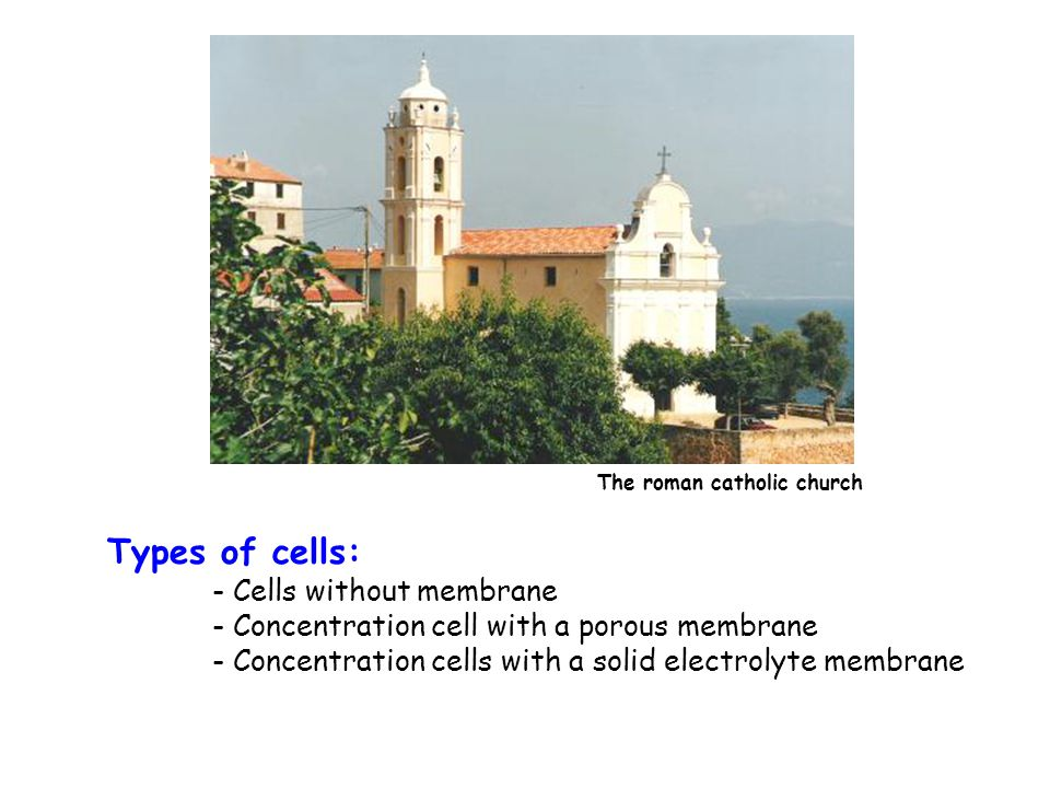 Types of cells: - Cells without membrane