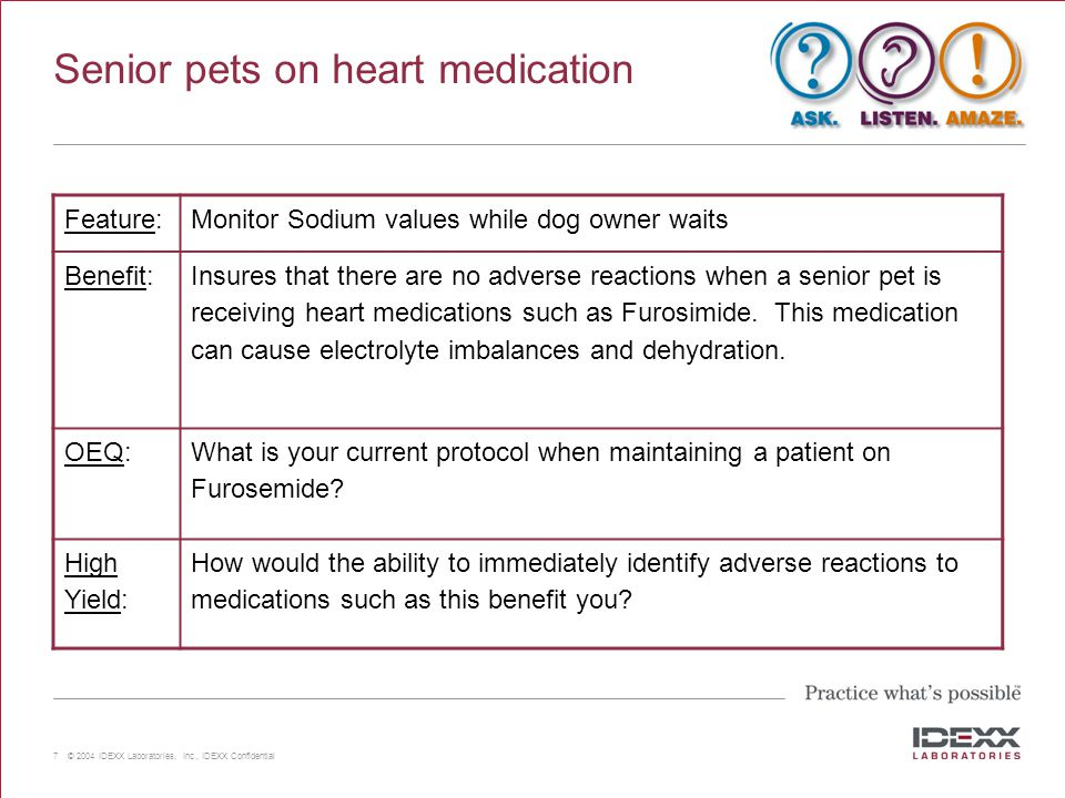 Senior pets on heart medication