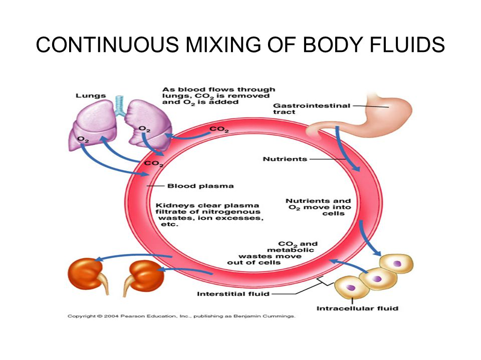 CONTINUOUS MIXING OF BODY FLUIDS