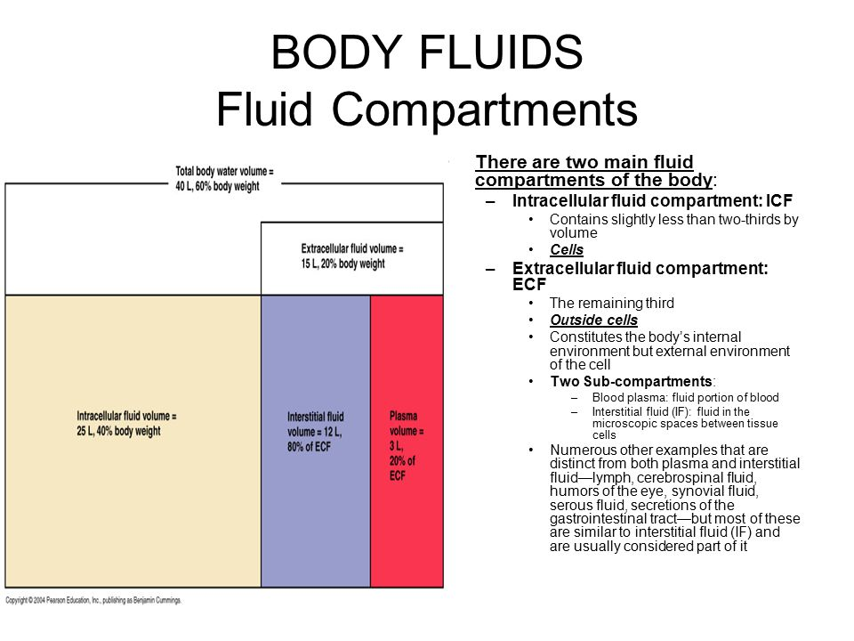 BODY FLUIDS Fluid Compartments