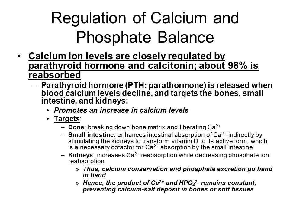 Regulation of Calcium and Phosphate Balance