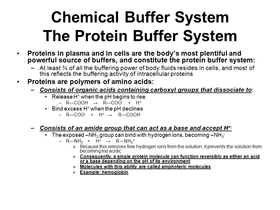 Chemical Buffer System The Protein Buffer System