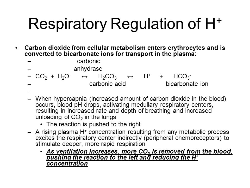 Respiratory Regulation of H+