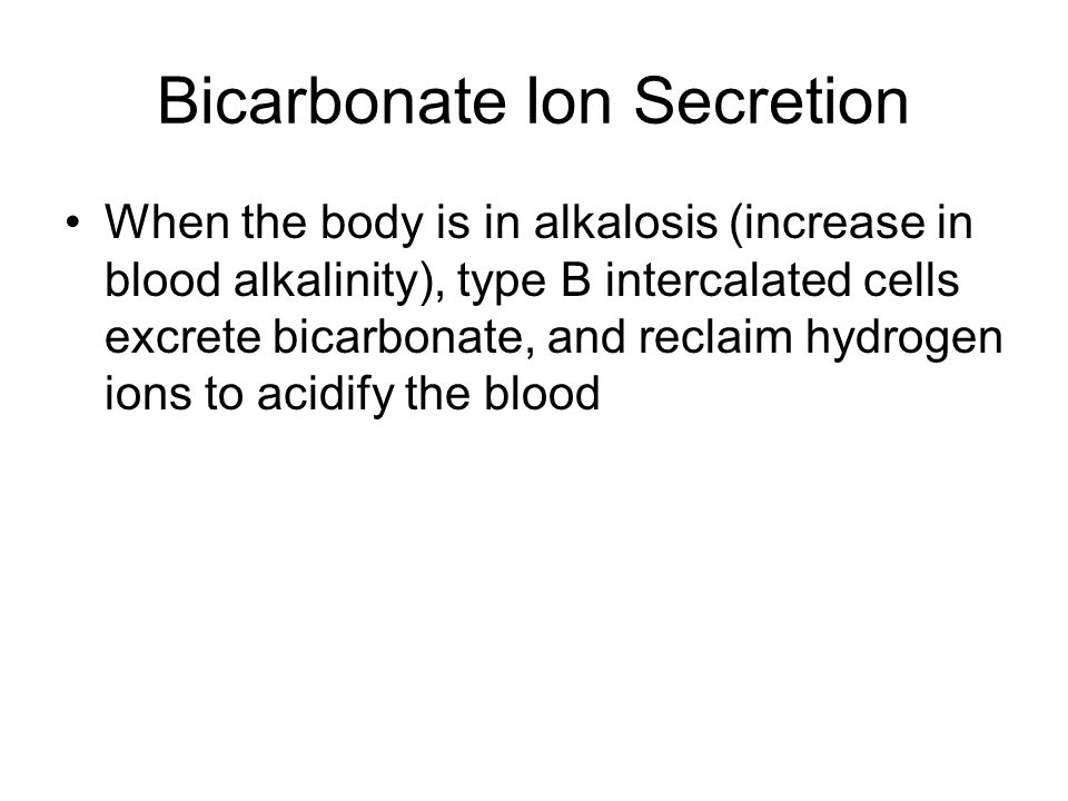 Bicarbonate Ion Secretion