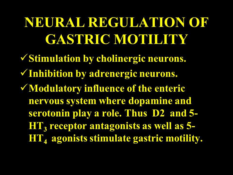 NEURAL REGULATION OF GASTRIC MOTILITY
